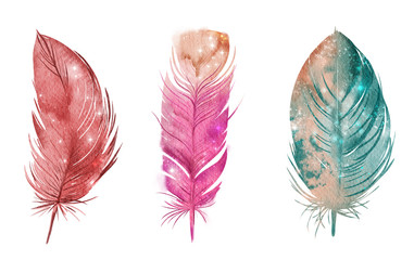 Feather set, watercolor