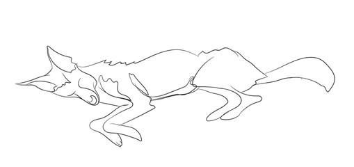 fox lies, line, vector