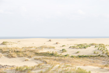 Sand dunes of the russian part Curonian Spit in autumn. the Baltic Sea coast. It is a UNESCO World Heritage Site.
