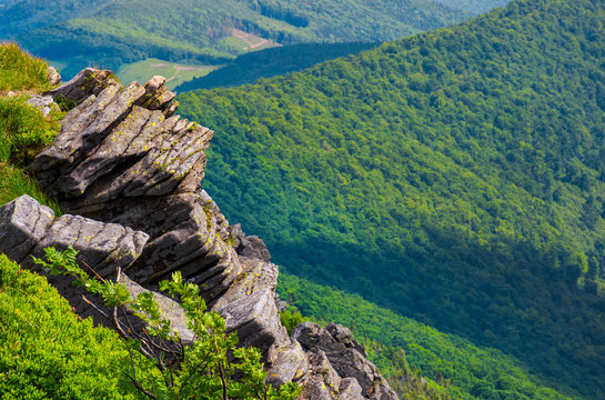rocky cliffs above the forested valley. lovely summer scenery of Carpathian mountains