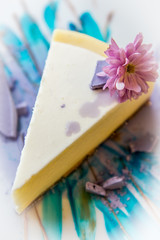 Colorful cheesecake