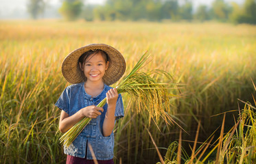 Girl holding rice Happy in the yellow rice field.