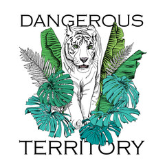 Poster with image of a white tiger walking in green banana leaves, fern, monstera. Vector illustration.