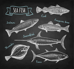 Sea food chalk set.