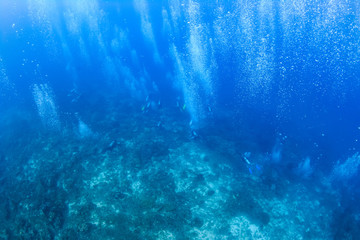 Bubbles from SCUBA divers on a heaily overcrowded dive site in Thailand