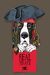 Great Dane Dog in a Pirate hat, bandana and with a dreadlocks. Vector illustration.