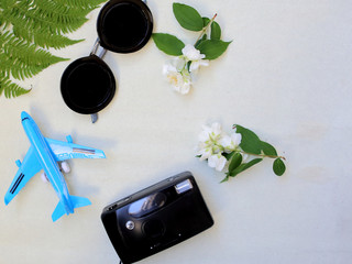 Flat lay photo with the sunglasses, green leafs, camera and toy airplane. Minimal summer concept