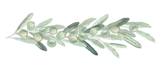 Watercolor olive floral illustration - olive branch / bouquet / border for wedding stationary, greetings, wallpapers, fashion, backgrounds, textures, DIY, wrapping, postcards, logo, branding, etc.