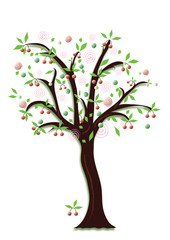 Fruit tree with cherries, object isolated, vector format.
