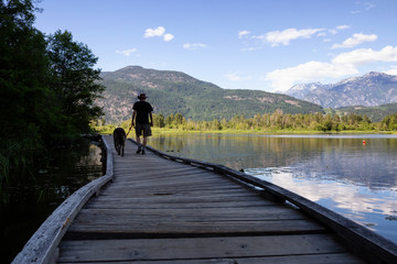 Wooden path in the park during a sunny day. Taken in One Mile Lake, Pemberton, British Columbia, Canada.