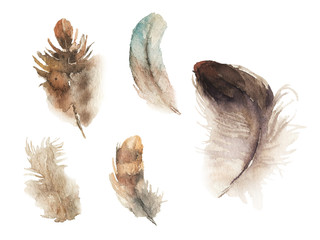 Watercolor hand drawn feathers illustration - boho style elements