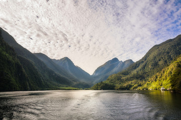 Morning Light hitting the Docks at Doubtful Sound in New Zealand