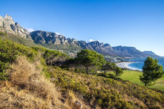 grass, travel, summer, green, rock,Camps Bay, Cape Town, South Afica,  Twelve Apostels, mountain, landscape, mountains, nature