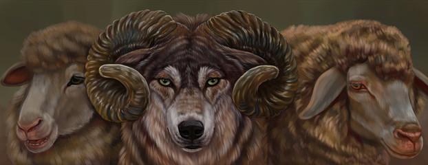 Волк и овцы