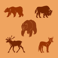 Vector illustration of wild animals.Hand drawn mammal silhouettes.