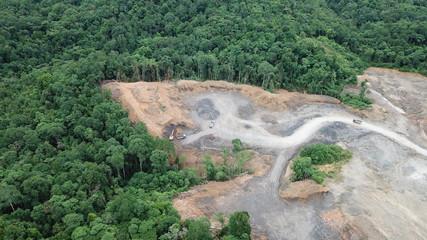 Deforestation. Logging of rainforest in Borneo, Malaysia