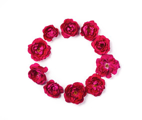 Round frame wreath made of pink rose flowers isolated on white background. Top view. Flat lay.