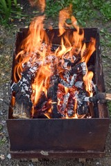 fire wood nature