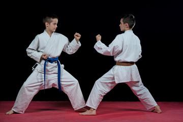 Children are training karate blows