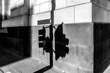 Shadow of traffic light on a wall on street corner in black and white. Melbourne, Australia Fotomurales