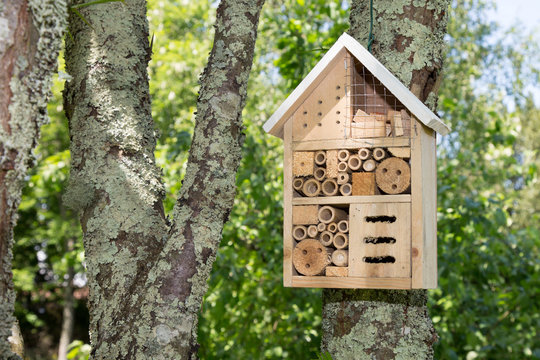 Insect house in a summer garden Hotel for insects
