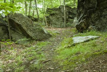 Trail above Blackstone Gorge