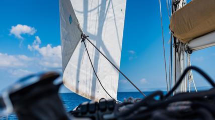 żeglarstwo biały żagiel