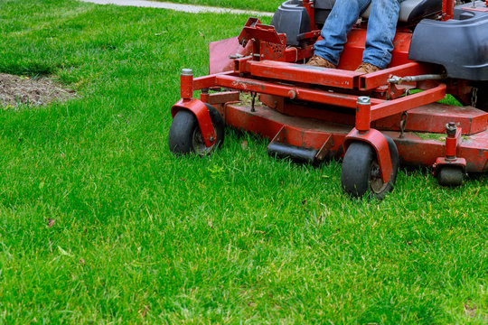 Landscaping Professional Gardener with Large Large of mower cutting the grass