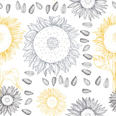 Hand drawn sunflower flowers and seeds.  Vector seamless pattern