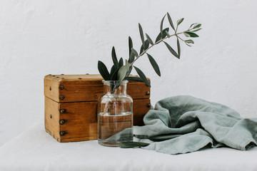 Olive branch in bottle. Minimal composition