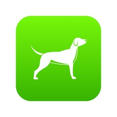 Dog icon digital green for any design isolated on white vector illustration