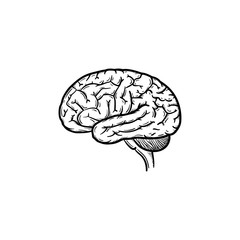 Human brain hand drawn outline doodle icon. Brain as a concept of intelligence and smart way of thinking vector sketch illustration for print, web, mobile and infographics isolated on white background