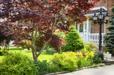 Home garden in summer bloom.