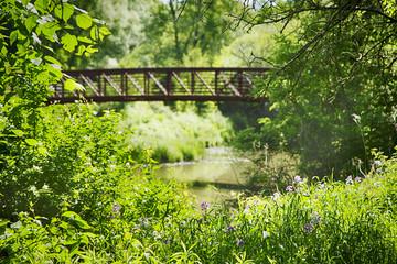 Bridge across the small river in park
