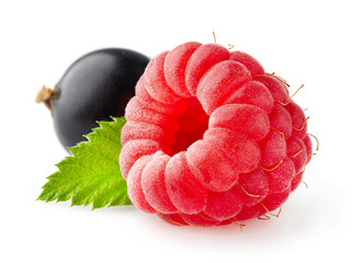 Raspberry with currant