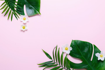 Frame of tropical leaves Monstera and palm on pink background a space for text. Top view, flat lay