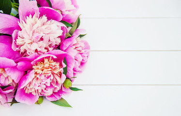 flowers peonies on a white background. selective focus.