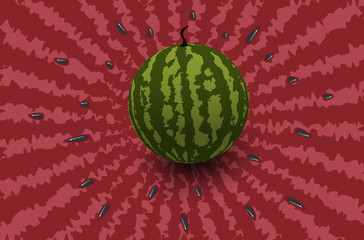 Vector illustration of a watermelon on a red background