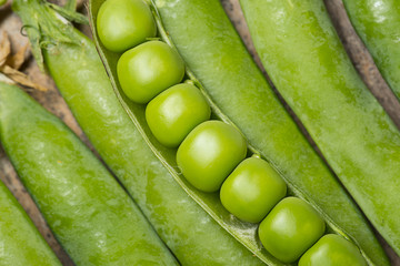 fresh peas close up in the detail