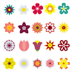 Flower flat color vector icon. Objects isolated on a white background.