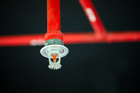 Fire sprinkler and red pipe.