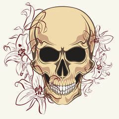 Skull with contour lilies