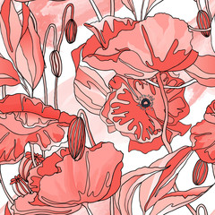 Seamless pattern, hand drawn red poppy flowers on white background