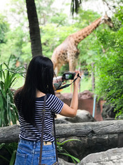 Young woman asia taking a photo at zoo.