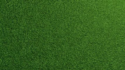 Gras Rasen Textur von oben