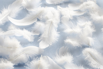 white fluffy feathers on fabric, pattern Wall mural