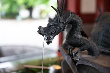 Statue of dragon spraying the water.