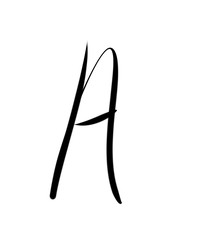 Expressive brush calligraphic handwritten script letters A