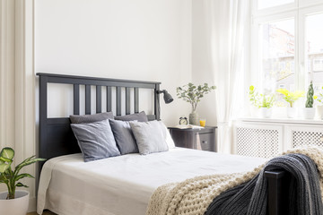 Cushions and blanket on bed with black headboard in bedroom interior with plant. Real photo