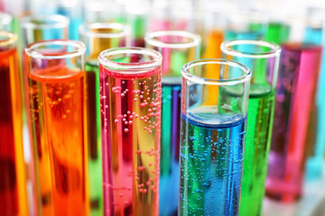 Many test tubes with colorful liquids, closeup Wall mural